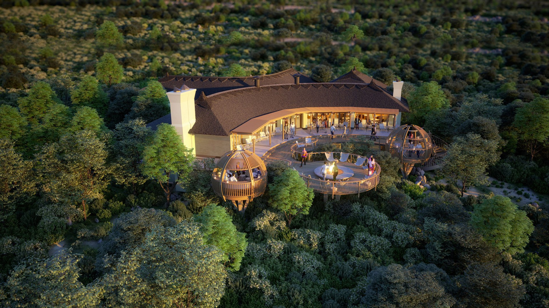 The Seven Best Safari Experiences In South Africa